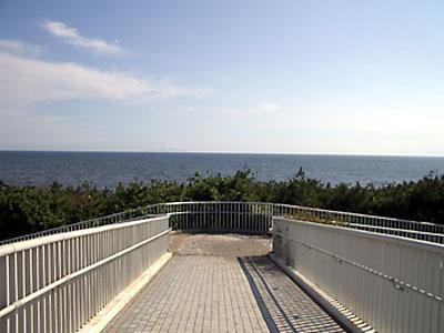 海岸道路を越える為、陸橋に登ると・・・太平洋が!