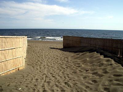 防砂柵が雰囲気を盛り上げます。